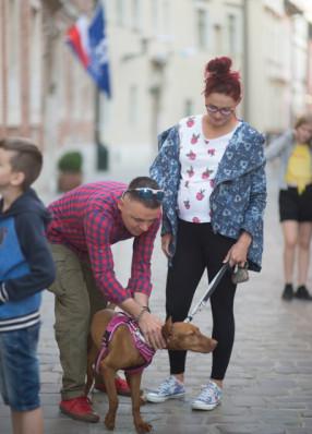 Rodzinnie przez Kraków
